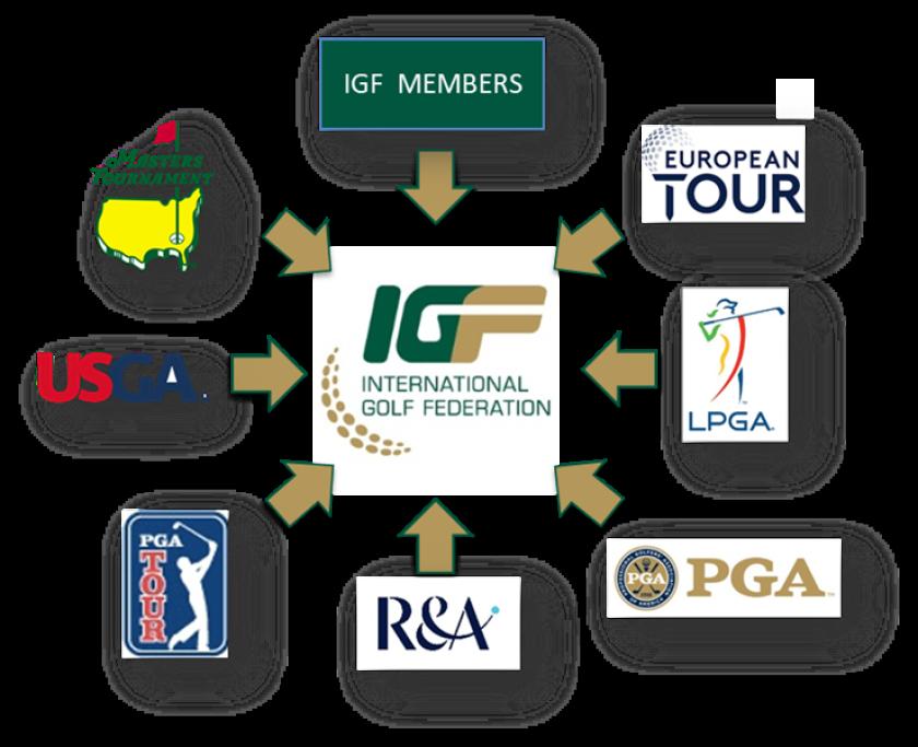IGF members.png